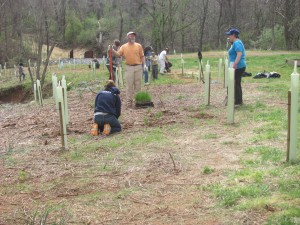 Volunteers planting trees at Quarry Park.