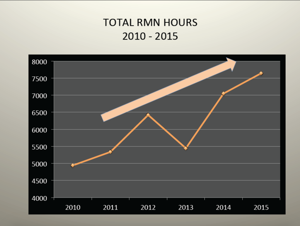 RMN volunteer hours 2015 3